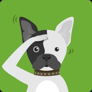 Dog-training374
